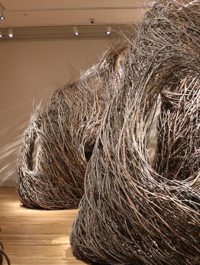 WONDER celebrates the Renwick Gallery's renewed dedication to the future of art.